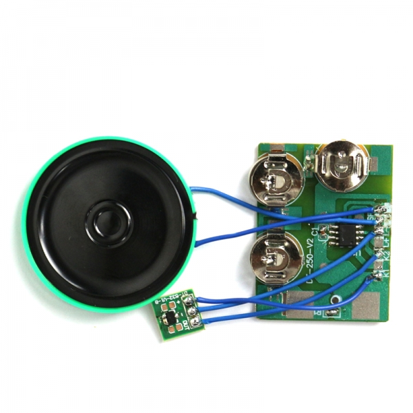 Programmable magnetic switch sound module for cards and gift box